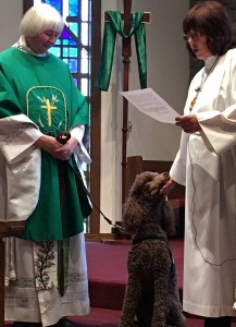 "Lord of Life members expect the dogs to be in worship and have fun giving their pastor ""grief"" if the dogs aren't there. Here, Kayci receives a blessing on her last day with the congregation"