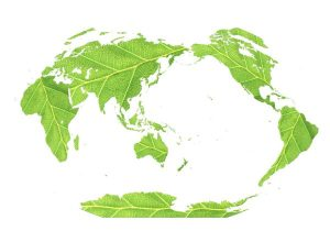 Leaves shaped into Earth's continents remind us that what we do in our corner of the world has global impact.